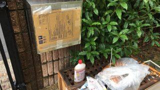 台風21号の被害(平成30年)