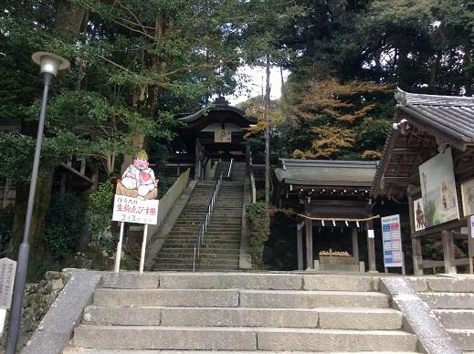 往馬大社に初詣(平成28年)