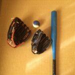 突然野球好きになる?:次男
